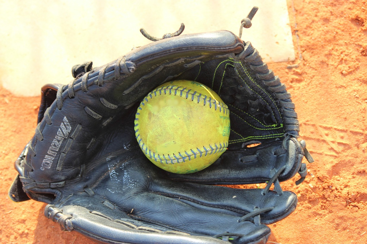 Baseball Gloves for Playing Catch