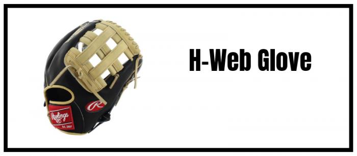 H Webbing