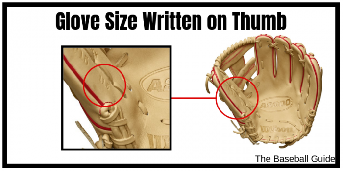 How to find size of baseball glove