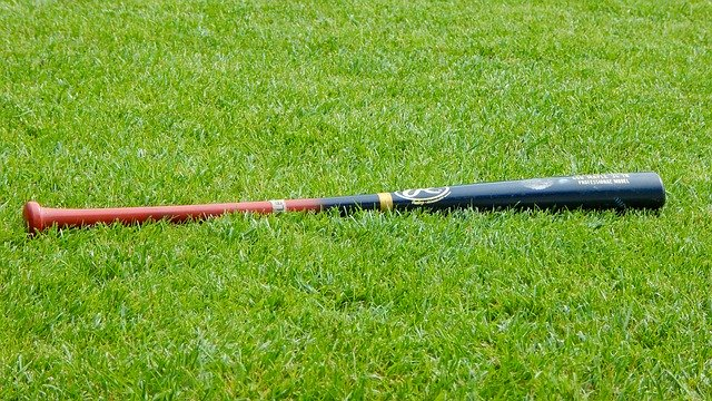 How to Paint a Baseball Bat