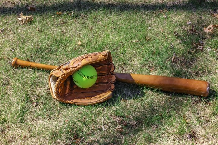 wooden bat for high school baseball